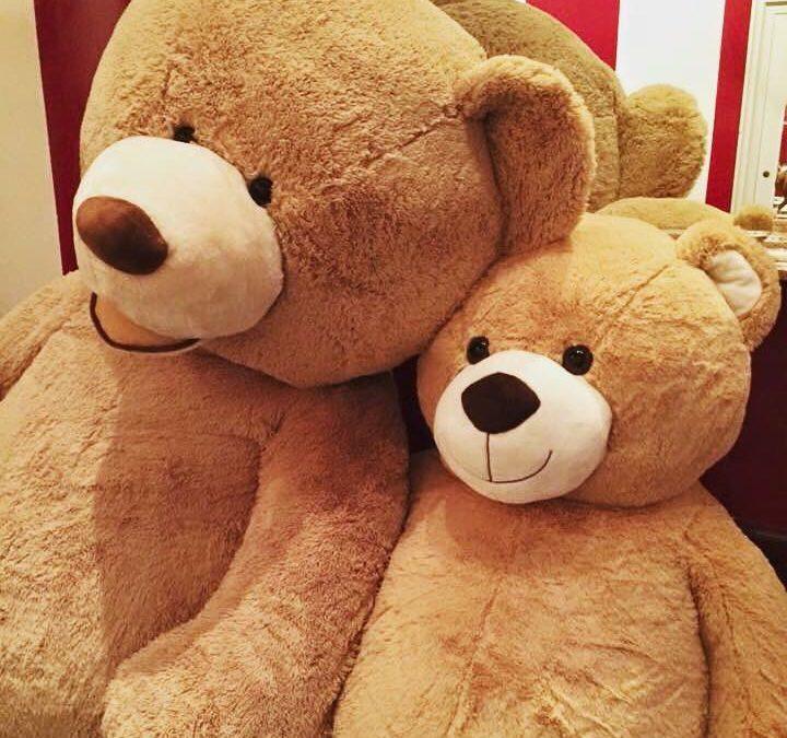 Third Annual Teddy Bear Drive